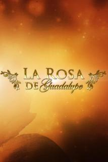 La Rosa De Guadalupe Episodes By Season Online & On Demand | DIRECTV