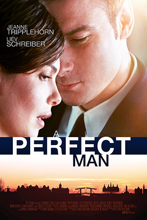 poster for A Perfect Man