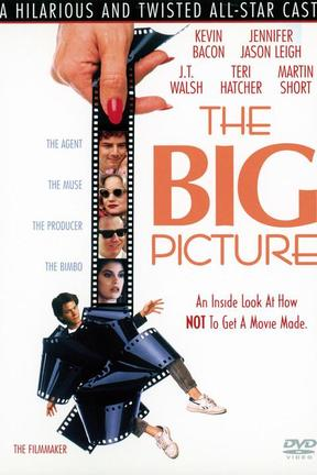 poster for The Big Picture