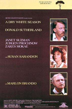poster for A Dry White Season