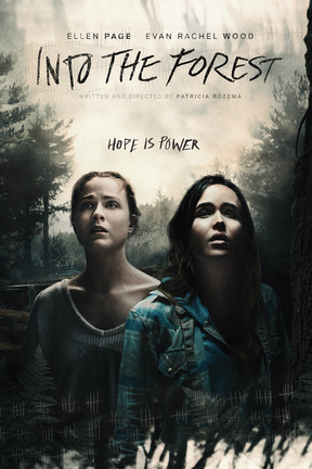 poster for Into the Forest