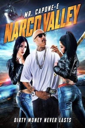 poster for Narco Valley
