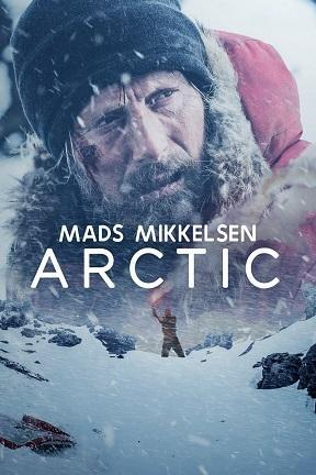 poster for Arctic