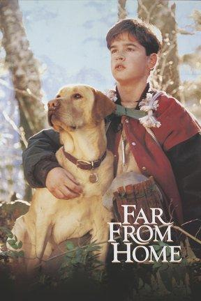 poster for Far From Home: The Adventures of Yellow Dog
