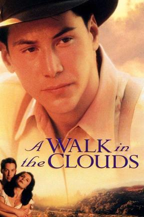 poster for A Walk in the Clouds