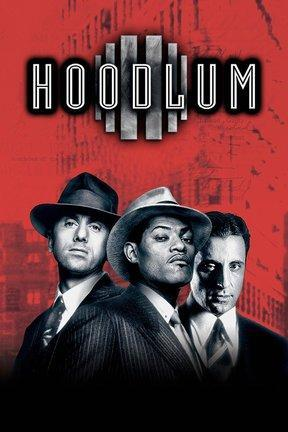 poster for Hoodlum
