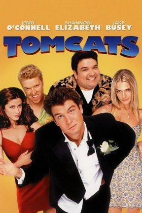 poster for Tomcats