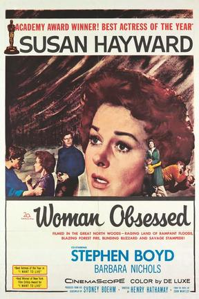 poster for Woman Obsessed