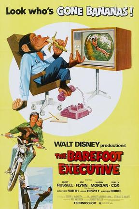 poster for The Barefoot Executive