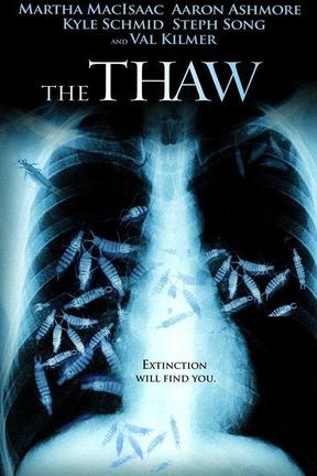 poster for The Thaw