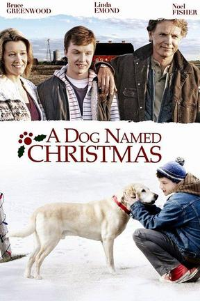 poster for A Dog Named Christmas