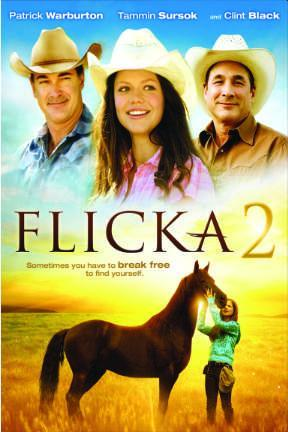 poster for Flicka 2