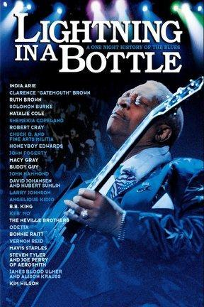 poster for Lightning in a Bottle