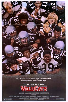 poster for Wildcats