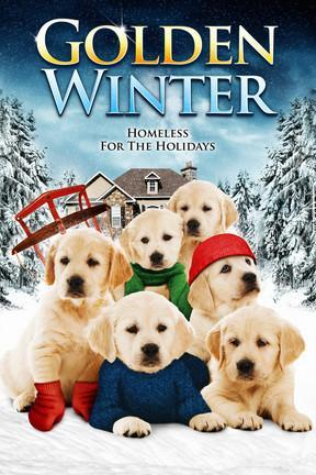 poster for Golden Winter