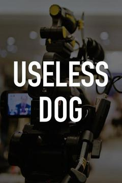 poster for Useless Dog