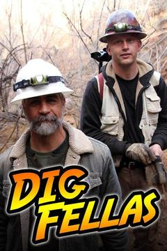 poster for DigFellas