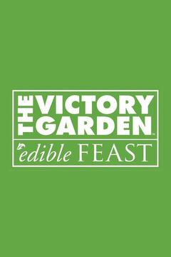 poster for The Victory Garden