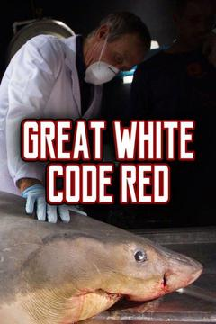 poster for Great White Code Red