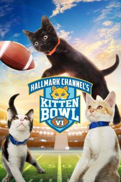 poster for Kitten Bowl VI