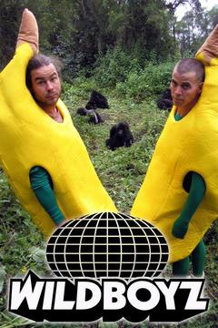 poster for Wildboyz