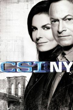 poster for CSI: NY