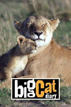 poster for Big Cat Diary