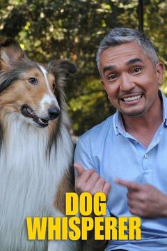 poster for Dog Whisperer