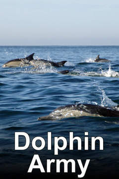 poster for Dolphin Army