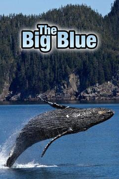 poster for The Big Blue