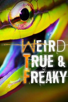 poster for Weird, True & Freaky
