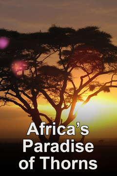 Africa's Paradise of Thorns