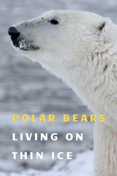 poster for Polar Bears: Living on Thin Ice