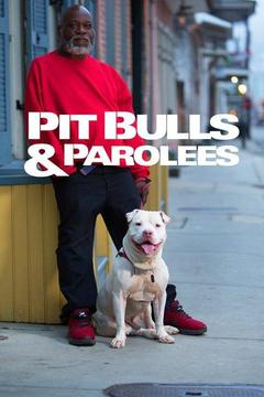 poster for Pit Bulls and Parolees