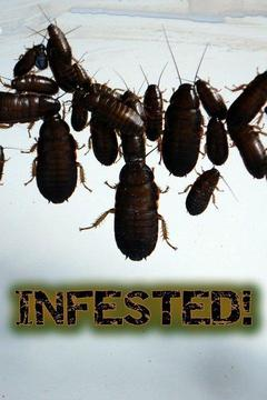 poster for Infested!