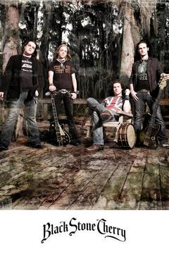 poster for Black Stone Cherry