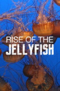poster for Rise of the Jellyfish