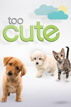 poster for Too Cute!