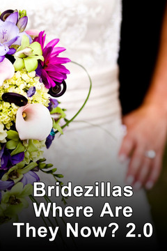 poster for Bridezillas Where Are They Now? 2.0