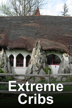 poster for Extreme Cribs