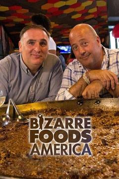 poster for Bizarre Foods America