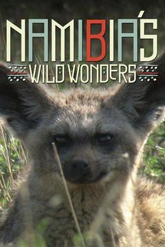 poster for Namibia's Wild Wonders