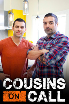 poster for Cousins on Call