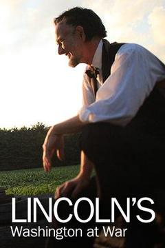 Lincoln's Washington at War