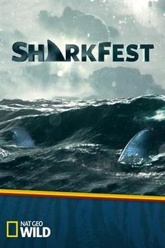 poster for Shocking Sharks