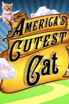 poster for America's Cutest Cat