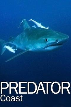 poster for The Predator Coast