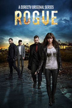 poster for Rogue